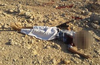 مقتل 5 إرهابيين بمنطقة جبلية بالصعيد بعد تبادل إطلاق نار مع الشرطة   صور
