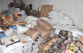 """""""تموين الإسكندرية"""" يضبط كميات كبيرة من السلع الفاسدة في حملة على الأسواق"""