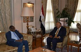 وزير الخارجية يجري محادثات سياسية مع نظيره السوداني
