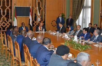 بدء اجتماعات اللجنة الوزارية المصرية - السودانية المشتركة   صور