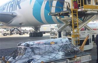 تعرف على حقيقة زيادة رسوم نقل جثامين المصريين المتوفين بالخارج إلى 70 ألف جنيه