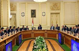 رئيس الوزراء يلتقى وفدا صينيا لمتابعة موقف تنفيذ منطقة الأعمال المركزية بالعاصمة الإدارية الجديدة
