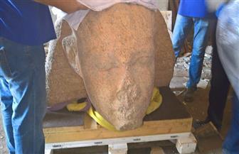 المتحف المصري الكبير يستقبل رأس تمثال للملك سنوسرت الأول |صور