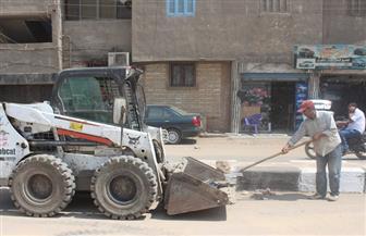 تواصل أعمال تجميل الشوارع وتكثيف حملات النظافة في المنيا احتفالا بعيد الميلاد