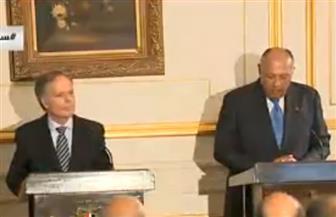 شكري: ناقشت مع وزير خارجية إيطاليا زيادة الاستثمارات فى مصر والهجرة غير الشرعية والملف الليبي