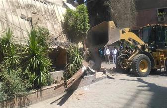 حملة موسعة بنطاق حي الدقي لإزالة الإشغالات بالتعاون مع مديرية أمن الجيزة | صور