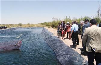 وزير الزراعة ومحافظ جنوب سيناء يتفقدان المشروعات الزراعية بالمحافظة