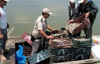 مديرية أمن كف رالشيخ تشن حملات على بحيرة البرلس   صور