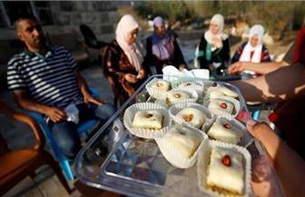 رشيدة طليب.. أول سيدة مسلمة على أعتاب الكونجرس الأمريكي واحتفالات في فلسطين