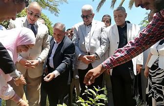 نقيب المهن الزراعية: تنفيذ مشروع بيئي لنظافة وتجميل جزيرة الجفتون