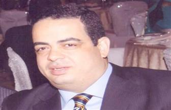 """أمين تنظيم """"مستقبل وطن"""": استعدادات الاستفتاء الدستوري تجري على قدم وساق في 6200 وحدة حزبية"""
