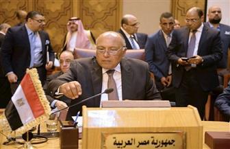 وزير الخارجية: القضية الفلسطينية تمر بمنعطف خطير يهدد بتقويض حل الدولتين