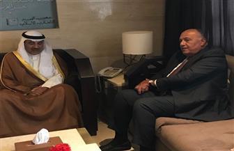 شكري يلتقي نظيره الكويتي لبحث آخر مستجدات العلاقات الثنائية وتطورات القضايا الإقليمية والدولية | صور