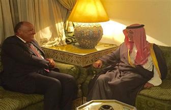شكري ونظيره السعودي يناقشان عددا من الملفات الإقليمية علي هامش اجتماعات المجلس الوزاري العربي بالقاهرة