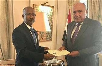 سفير إثيوبيا الجديد في القاهرة يقدم أوراق اعتماده لوزير الخارجية