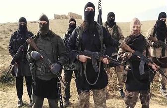 11 قتيلا من قوات النظام في هجوم لتنظيم داعش في البادية السورية