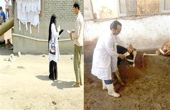 بدء الحملة القومية الثانية لتحصين الثروة الحيوانية ببورسعيد ضد الحمى القلاعية  صور