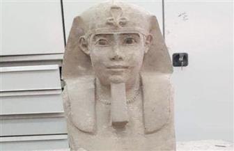 اكتشاف تمثال لأبي الهول في معبد كوم أمبو بأسوان | صور