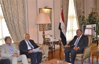 وزير الخارجية يبحث مع الدكتور مجدي يعقوب جهود دعم الأشقاء الأفارقة في علاج أمراض القلب| صور