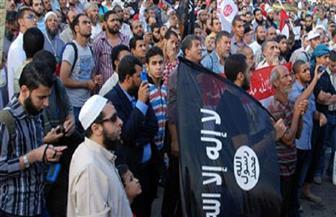 دبلوماسيون: تحالف الإخوان مع التنظيمات الإرهابية كان هدفه محو هوية مصر وإقامة دولة الخلافة