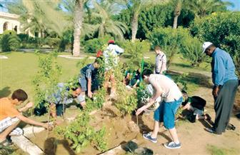 حملة لتشجير وتجميل الطريق الدائري في بني مزار بالمنيا