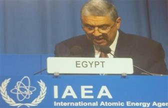 """وزير الكهرباء: مصر جادة في جعل منطقة الشرق الأوسط خالية من """"النووي"""""""