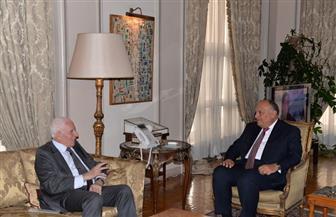 وزير الخارجية يستقبل عضو اللجنة التنفيذية لمنظمة التحرير الفلسطينية