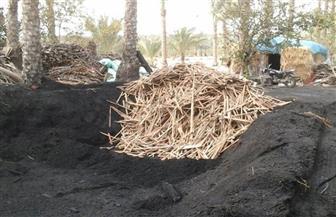 إزالة 904 مكامير مخالفة للبيئة في كفر البطيخ