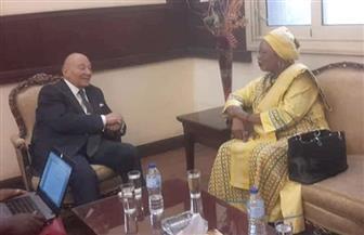"""""""القومي لحقوق الإنسان"""" يستقبل وفد اللجنة الإفريقية للنهوض بالقارة"""