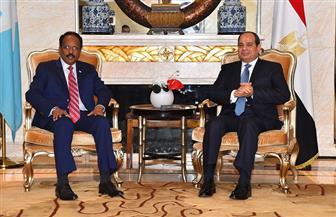 الرئيس السيسي يلتقي نظيره الصومالي خلال زيارة للصين   صور