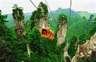 1.6 مليار زيارة متوقعة للحدائق الغابية في الصين في العام الجاري