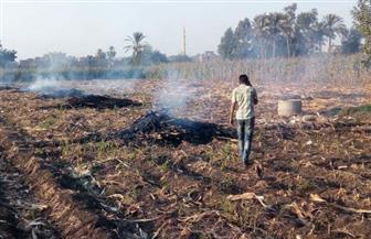 ضبط 693 منشأة صناعية مخالفة وتحرير 102 محضر حرق مخلفات زراعية
