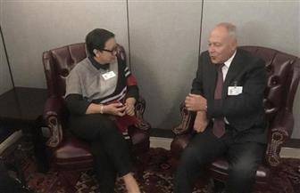 أبو الغيط يبحث مع وزيرة خارجية إندونيسيا تطورات الأوضاع في الشرق الأوسط