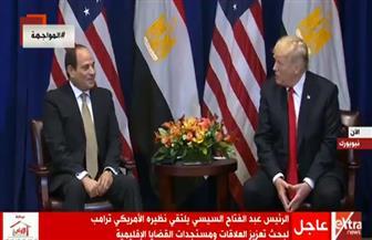 الرئيس السيسي: لقاء ترامب يعكس قوة العلاقة بين البلدين