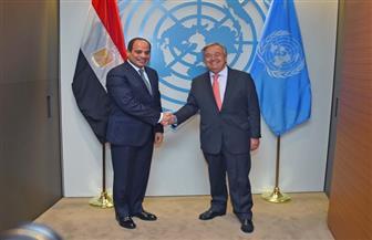 الرئيس السيسي يؤكد دعم مصر جهود الأمم المتحدة في تحقيق السلم والأمن الدوليين | صور