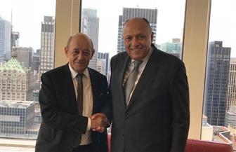 المتحدث باسم الخارجية: مصر وفرنسا تجمعهما رغبة مشتركة في تنسيق المواقف والتشاور المستمر