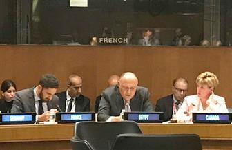 شكري يشارك في الاجتماع الوزاري للجنة الاتصال المعنية بتنسيق المساعدات للفلسطينيين |صور