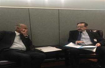 أبو الغيط يجتمع بالسكرتير العام لمنظمة الأمن والتعاون في الأوروبية