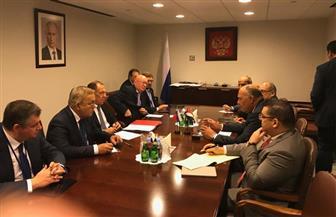 سامح شكري لوزير خارجية روسيا: يجب الحفاظ على مؤسسات الدولة في ليبيا وسوريا | صور