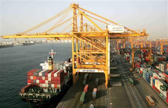 تداول 25 سفينة حاويات وبضائع عامة بموانى بورسعيد