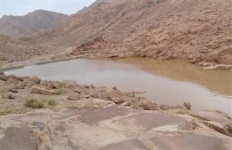المتحدث باسم الري: سيول هذا العام ستكون خيرا على وديان جنوب سيناء والبحر الأحمر| صور