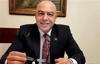 رئيس المركز المصري للدراسات والأبحاث: مصر تعتبر البوابة الإفريقية بالنسبة للصين