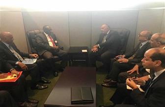 وزير الخارجية يبحث التعاون الثنائي والقضايا الإقليمية مع نظيره السوداني