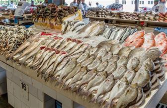 مبادرة لإطلاق أول سوق سمك أون لاين في مصر