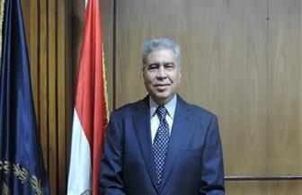 قوافل تموينية ومهرجان رياضي  وأنشطة فنية  بقرية الروضة في المنيا