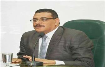 علي مسعود: مصر رأس الحربة في مكافحة الإرهاب