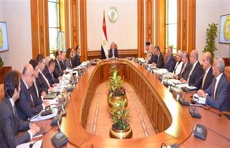 """الرئيس السيسي يترأس الاجتماع الثالث للمجلس القومي لـ""""المدفوعات"""""""