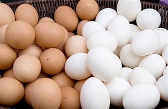محافظة سوهاج توضح سبب عدم تشغيل مشروع إنتاج البيض بالعيساوية شرق بكامل طاقته