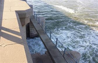 فتح 5 بوابات بقناطر إدفينا لتجديد مياه مجرى النيل فرع رشيد| صور