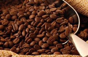 """""""الصناعات الغذائية"""": توقعات بارتفاع  البن والكاكاو خلال مارس المقبل"""